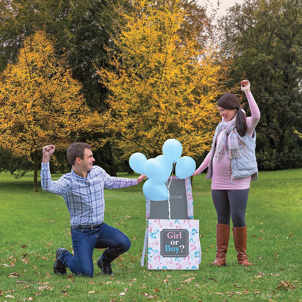 Large Pink & Blue Gender Reveal Box Image #1