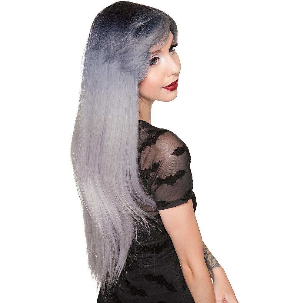Dark Root Silver Wig Image #2