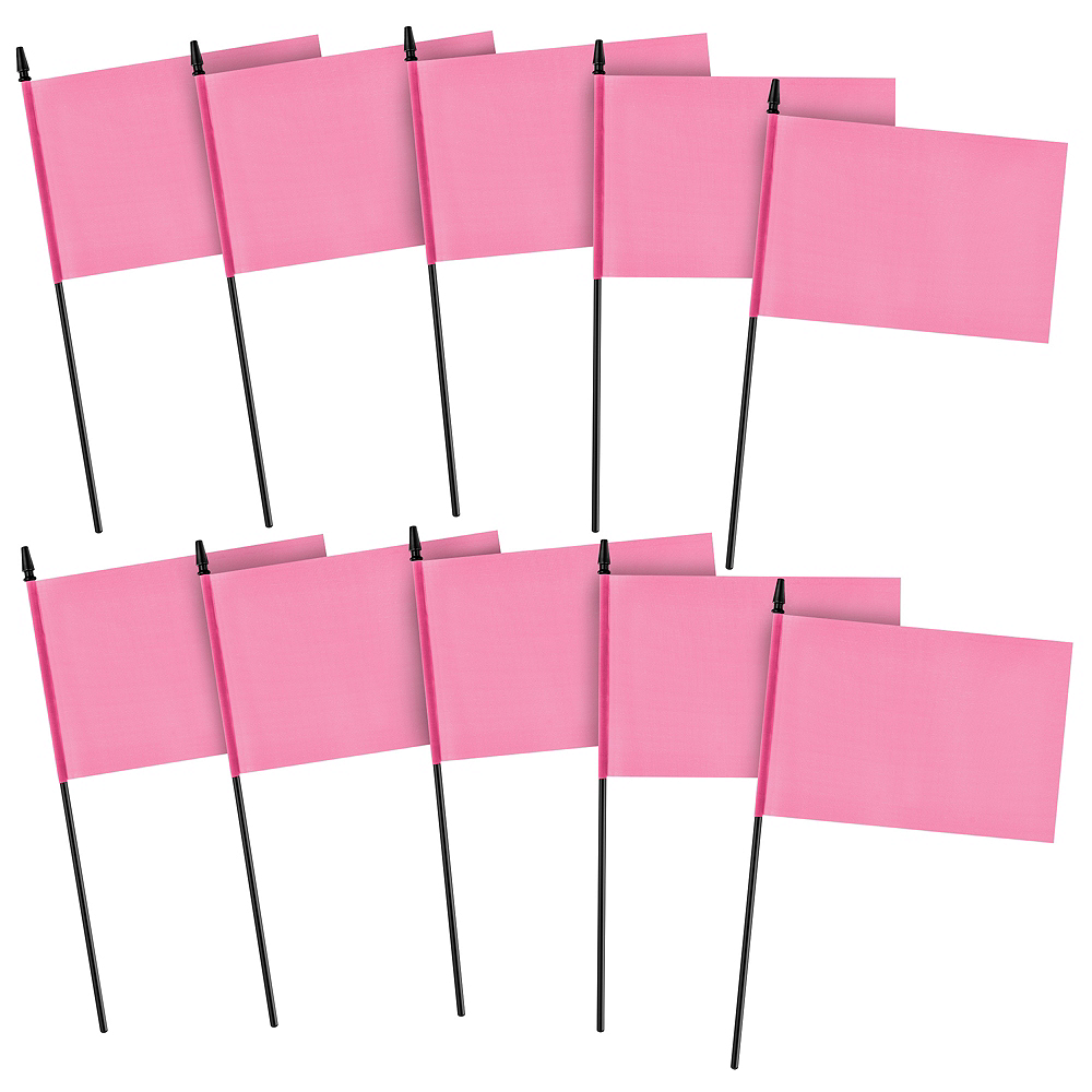 Pink Flags 10ct Image #1
