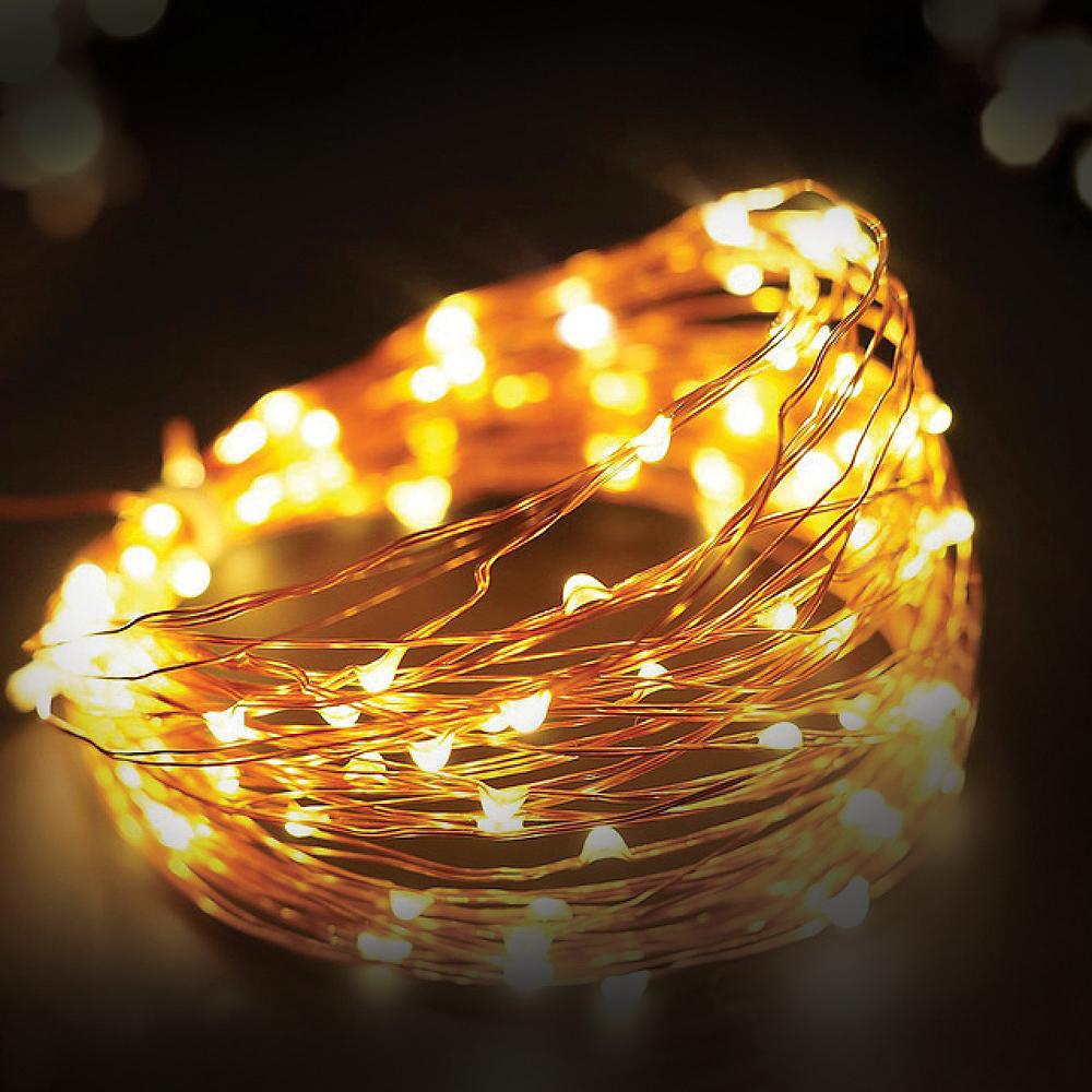 Copper Wire Warm White LED String Lights Image #2