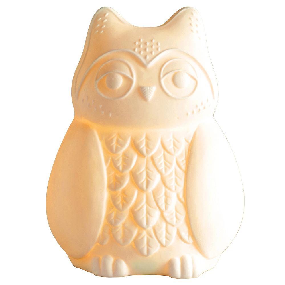 Owl Night Light Image #1