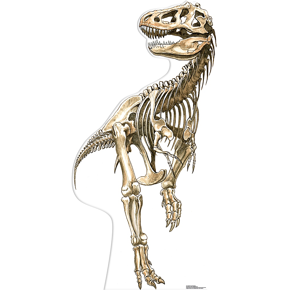 tyrannosaurus rex skeleton standee 38in x 76in party city