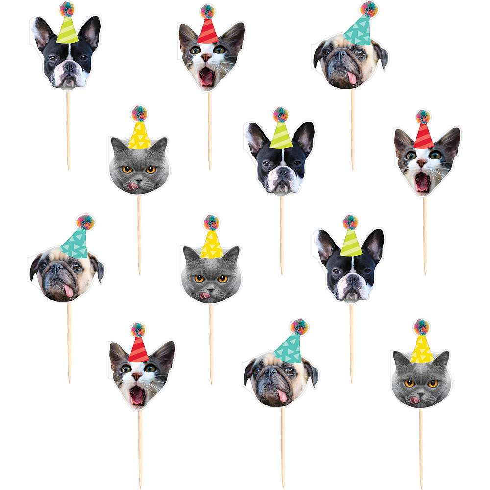 Over the Hill Animal Cupcake Picks 24ct Image #1