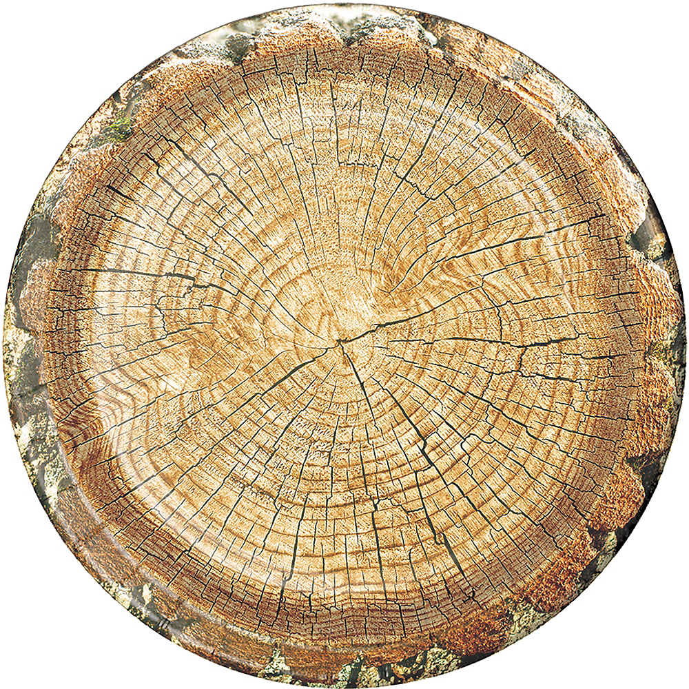 Cut Timber Dinner Plates 8ct Image #1