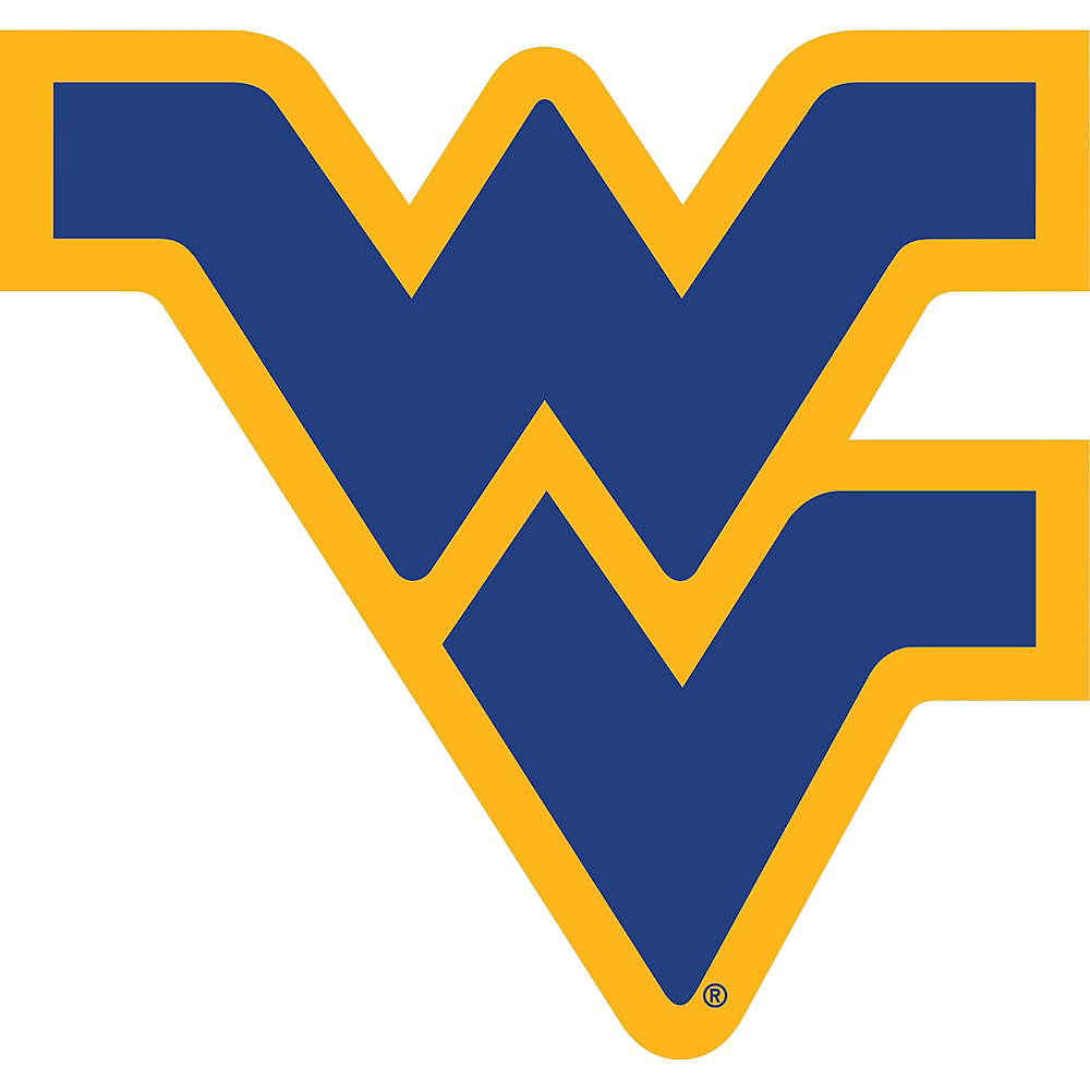 Michigan Wolverines Sign Image #1