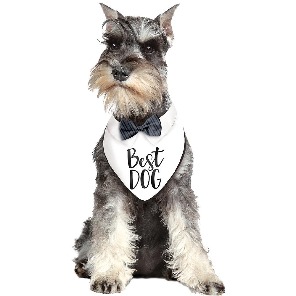 Best Dog Bandana Image #1