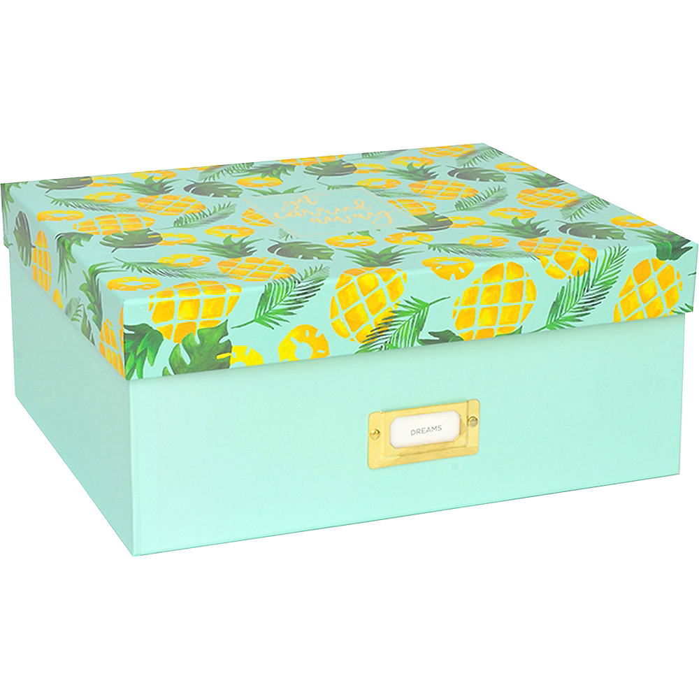 Get Carried Away Pineapple Storage Box Image #1