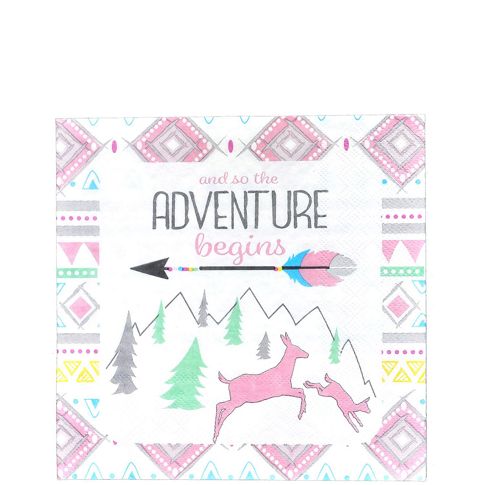 Pink Adventure Begins Premium Baby Shower Kit for 32 Guests Image #5
