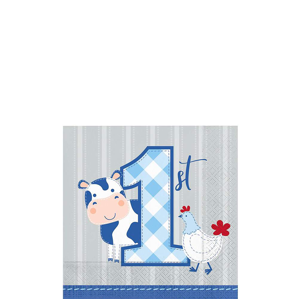 Ultimate Blue Farmhouse 1st Birthday Party Kit for 32 Guests Image #4