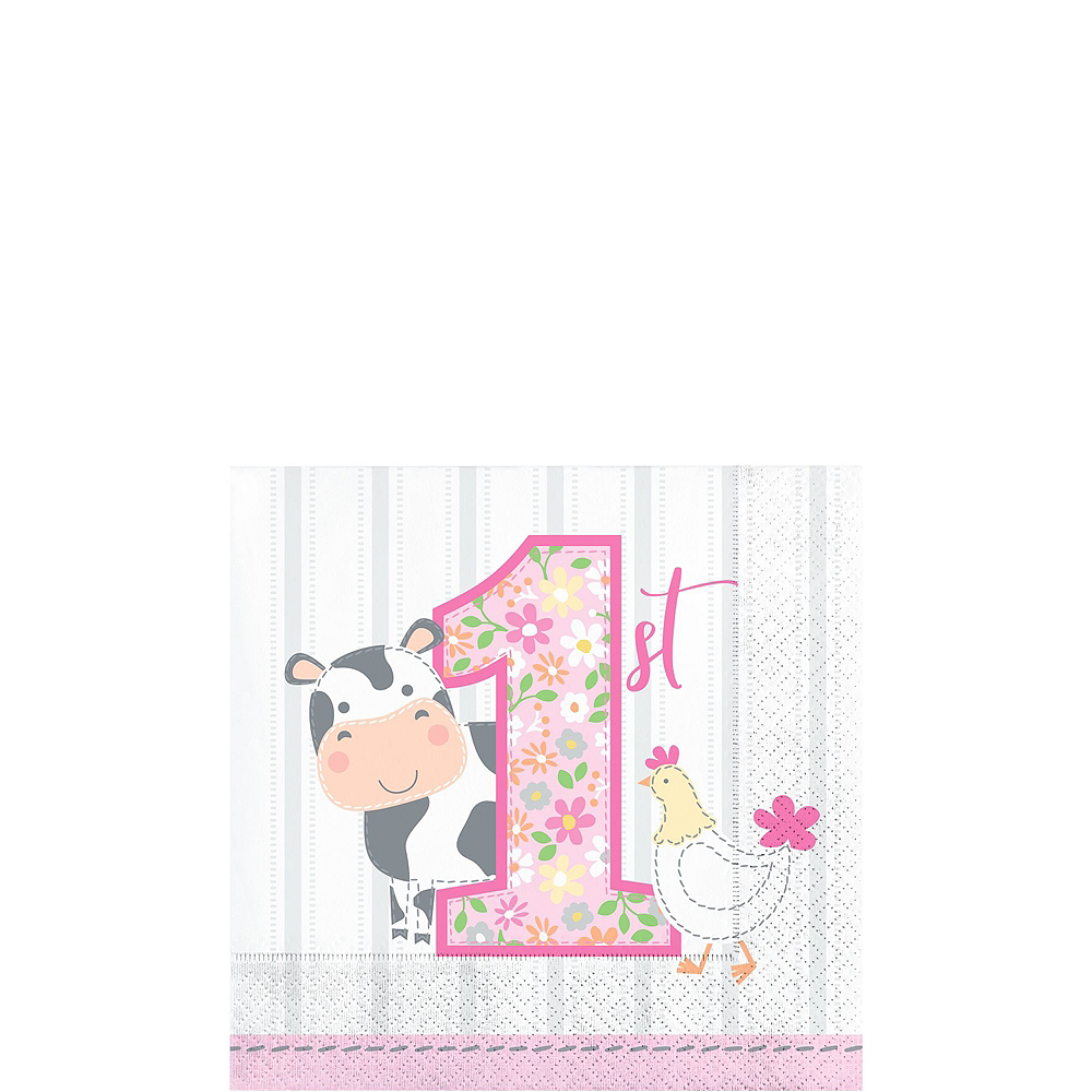 Pink Farmhouse 1st Birthday Tableware Kit for 16 Guests Image #4
