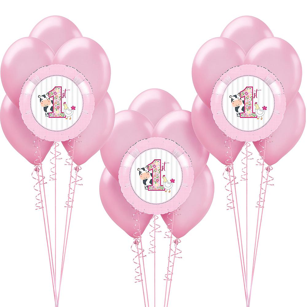 Pink Farmhouse 1st Birthday Balloon Kit Image #1