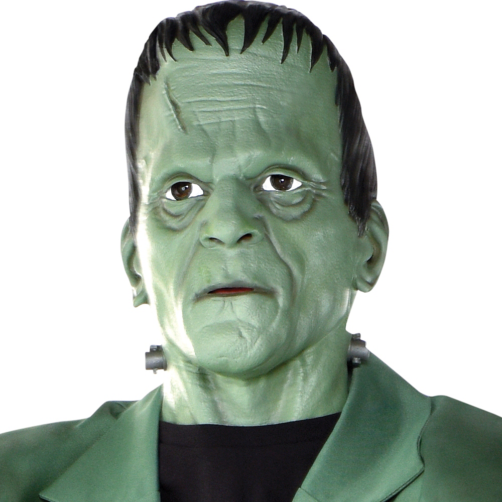 Adult Frankenstein Full Head Mask Image #4