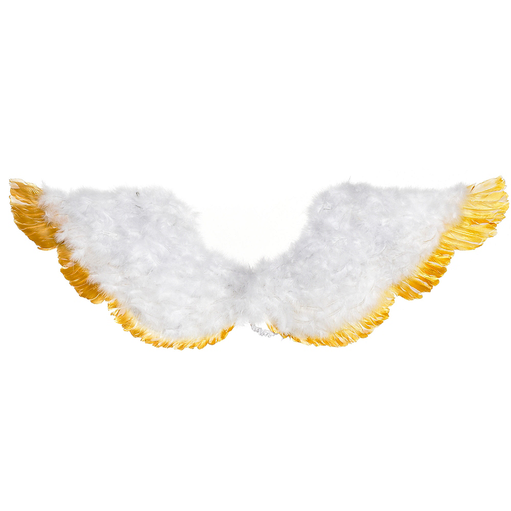 Gold-Tipped Feather Wings Image #2