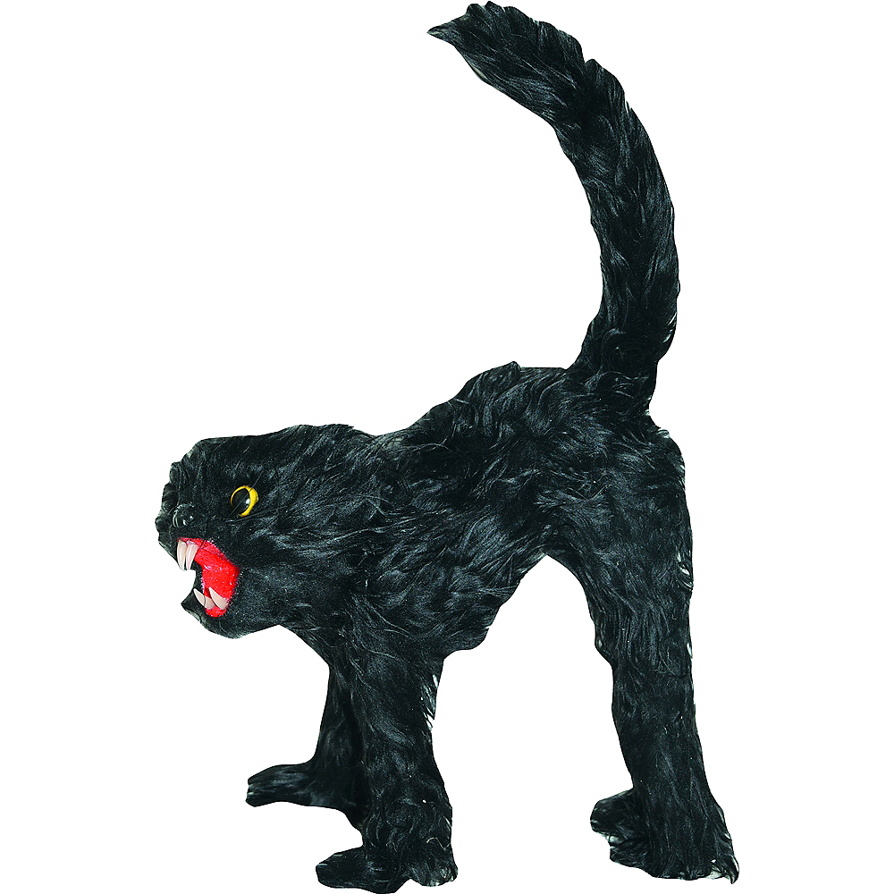 Frightened Black Cat Image #1