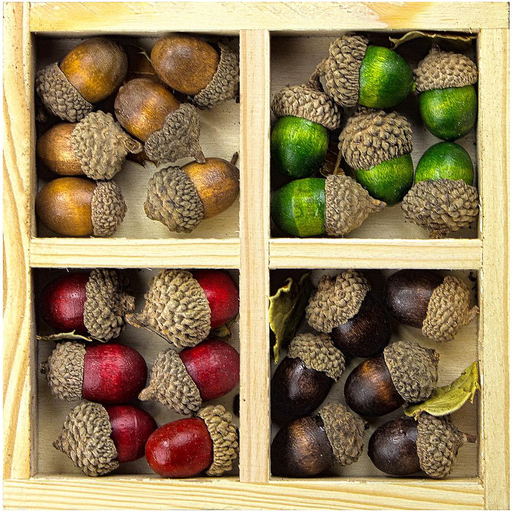 Assorted Acorns in Wood Box 24ct Image #1
