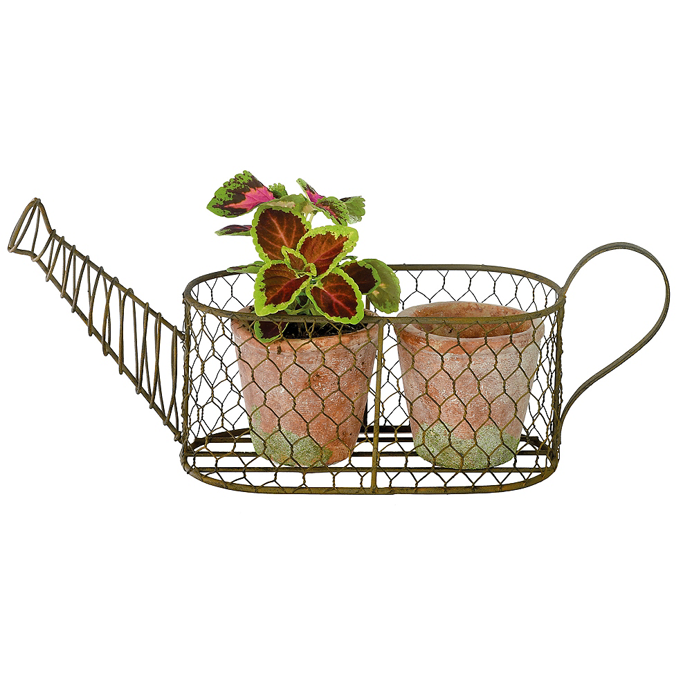 Water Can Planter Set 3pc Image #1