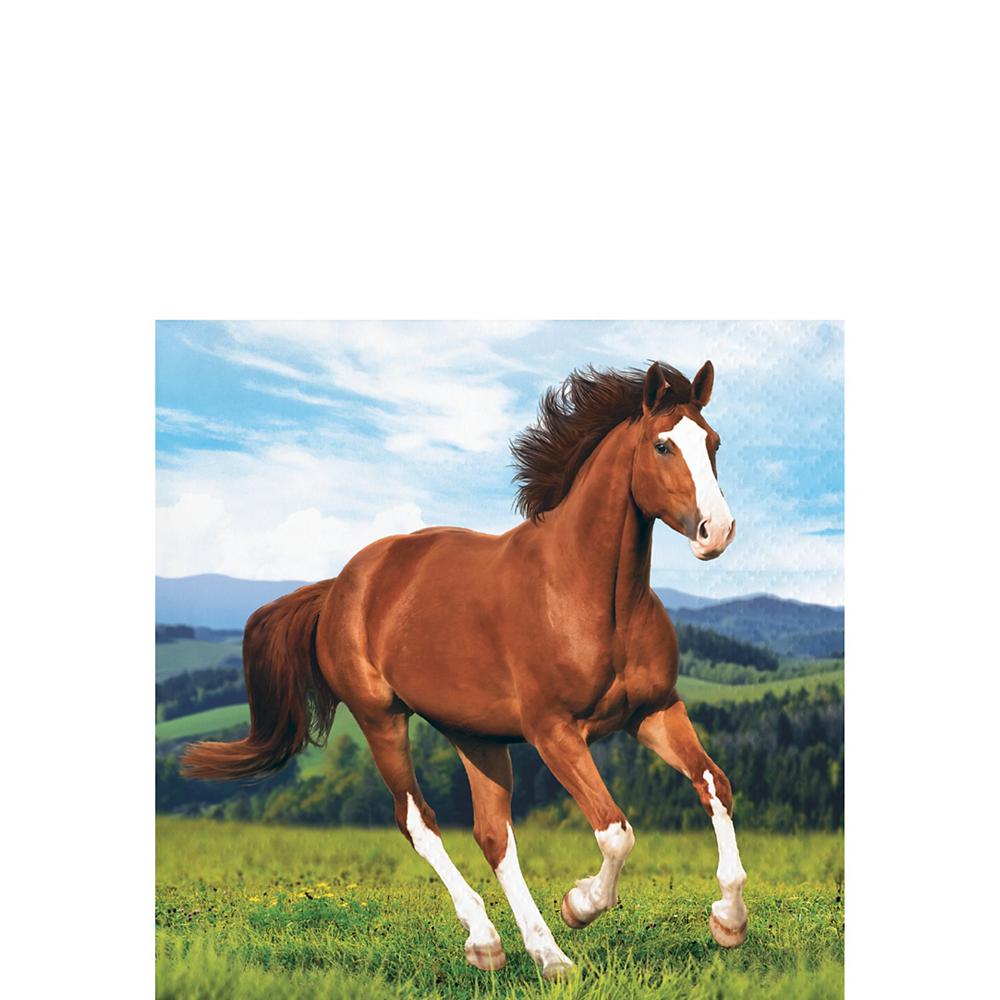 Wild Horse Beverage Napkins 16ct Image #1