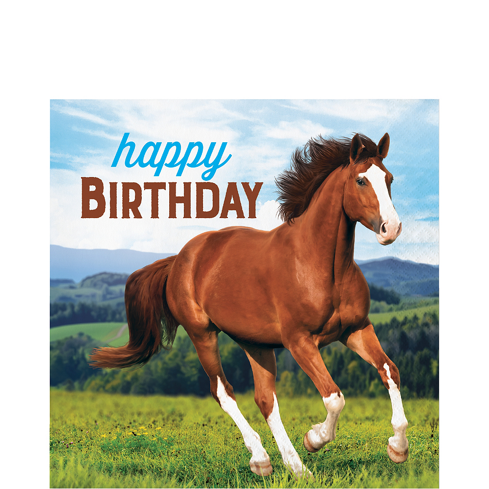 Wild Horse Happy Birthday Lunch Napkins 16ct Image #1