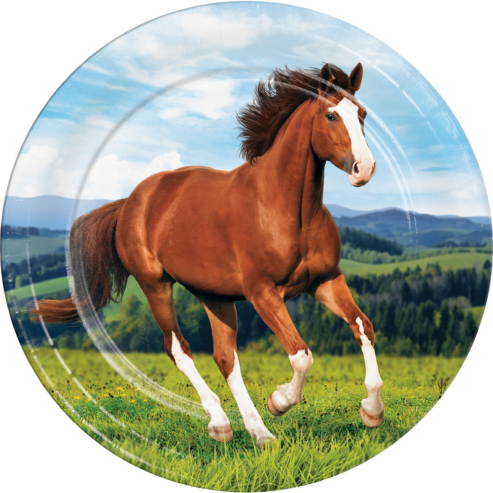 Wild Horse Tableware Kit for 16 Guests Image #3