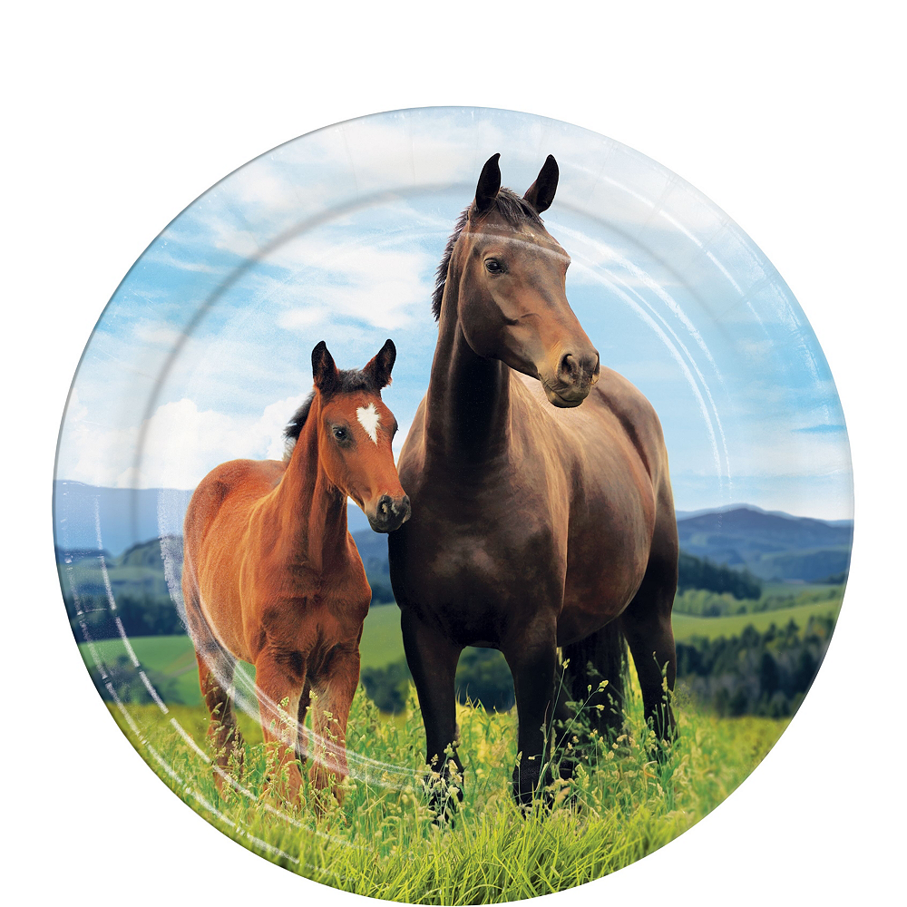 Wild Horse Tableware Kit for 24 Guests Image #2