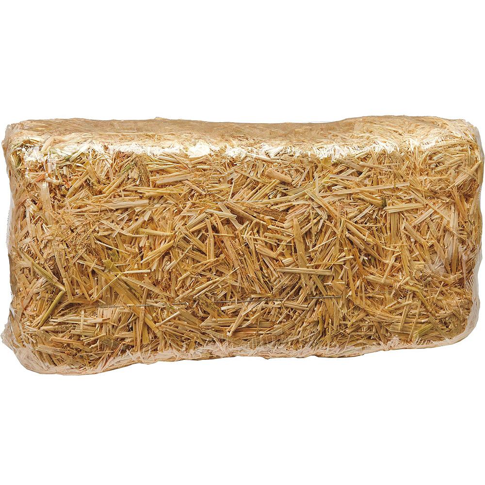 Straw Bale Decorating Kit Image #5