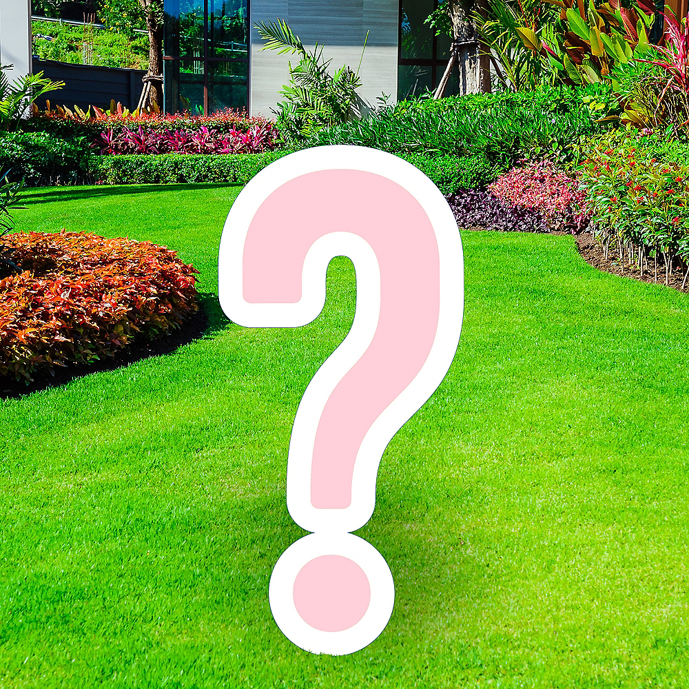 Giant Blush Pink Corrugated Plastic Question Mark Yard Sign, 20in Image #1