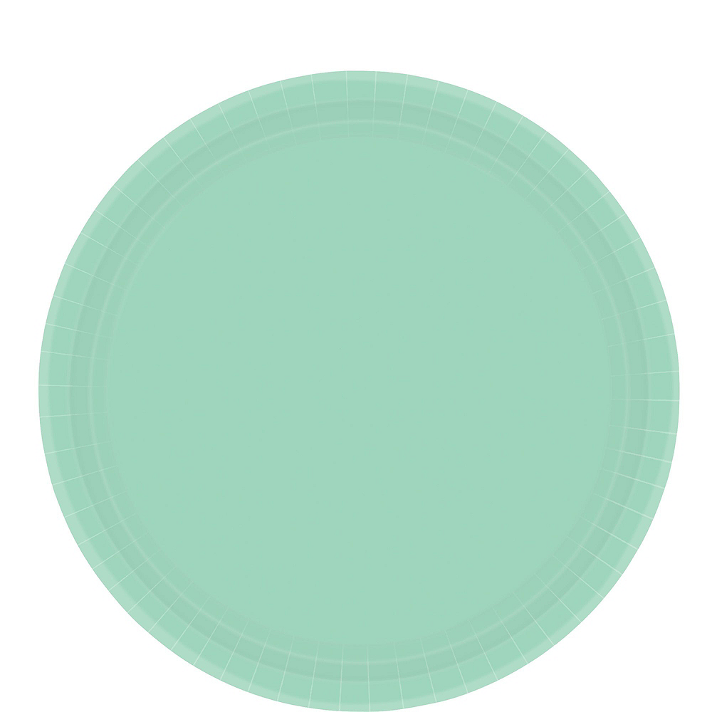 Mint Green Paper Tableware Kit for 20 Guests Image #3