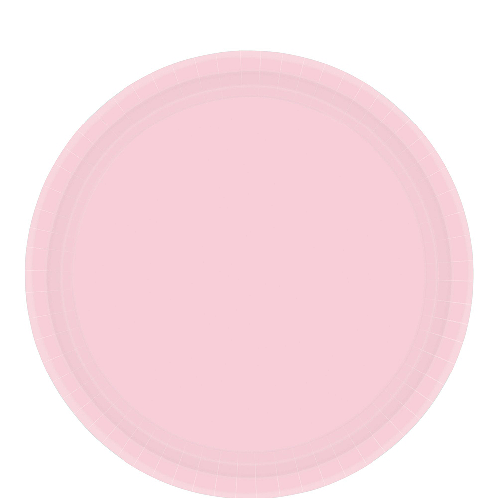 Blush Pink Tableware Kit for 20 Guests Image #3