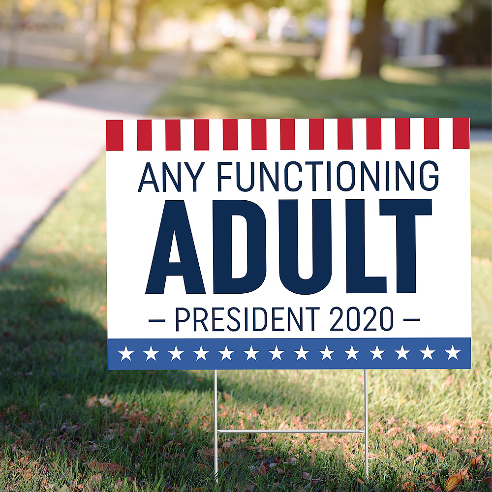 Novelty 2020 Election Yard Sign Image #1