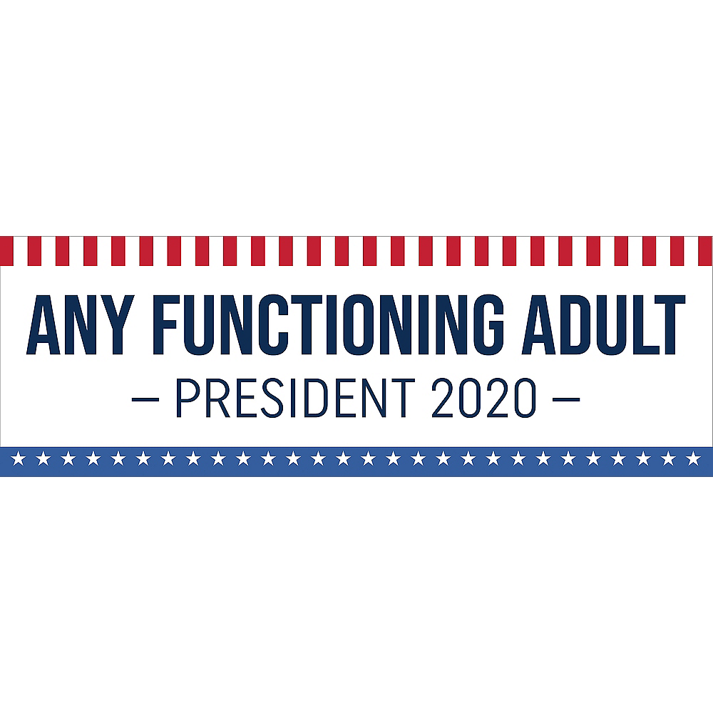 Novelty 2020 Election Horizontal Banner Image #1