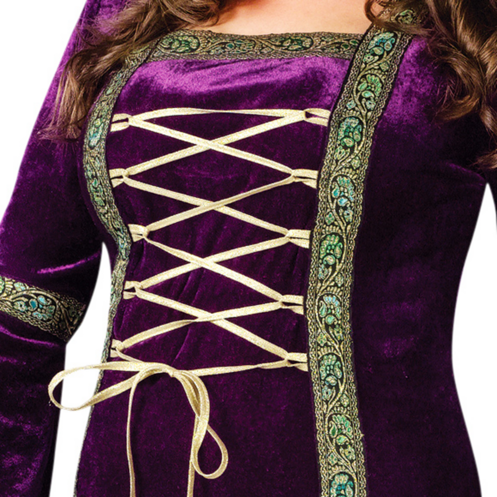Adult Renaissance Faire Lady Costume Plus Size Image #3