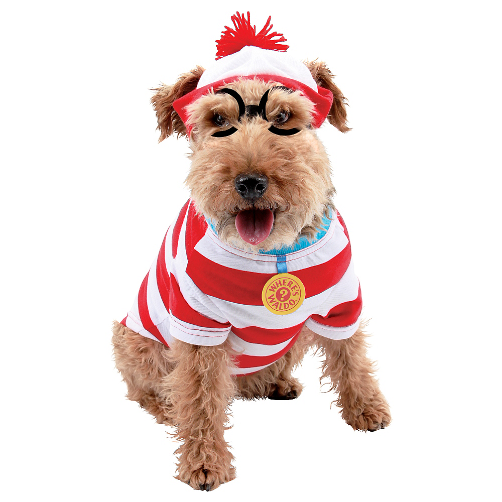 Where's Waldo Dog Costume Image #1