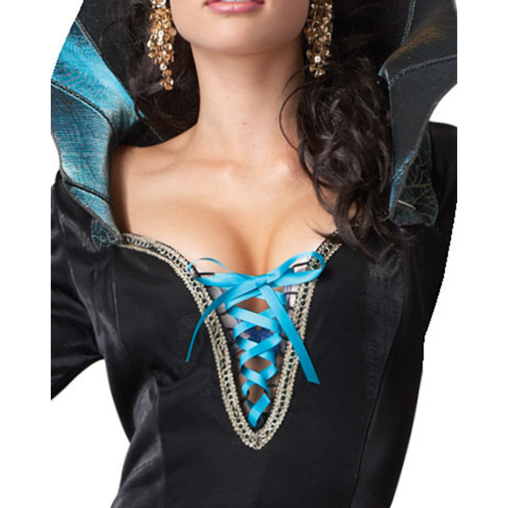 Adult Evil Sorceress Costume Image #3