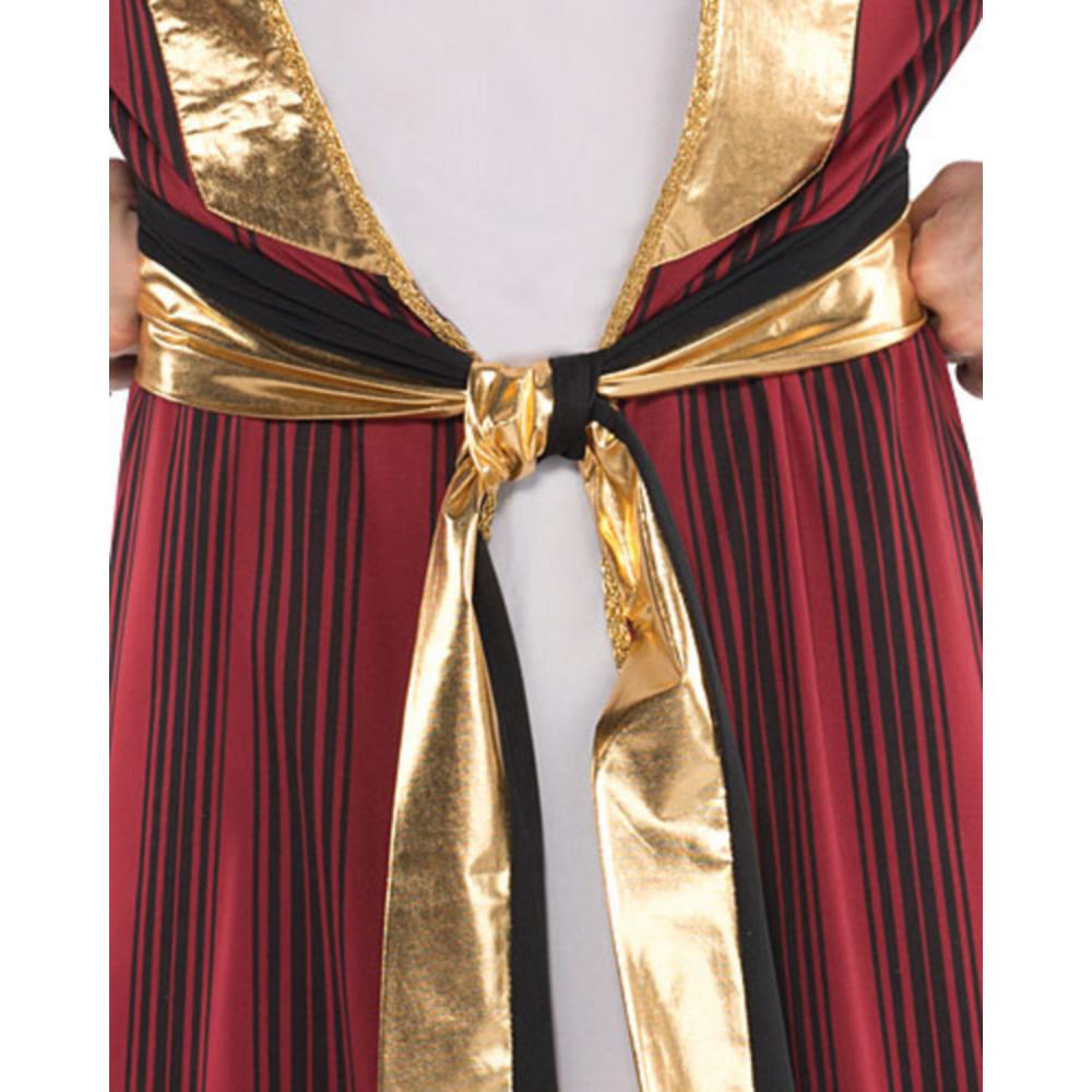Adult Sahara Prince Costume Image #3