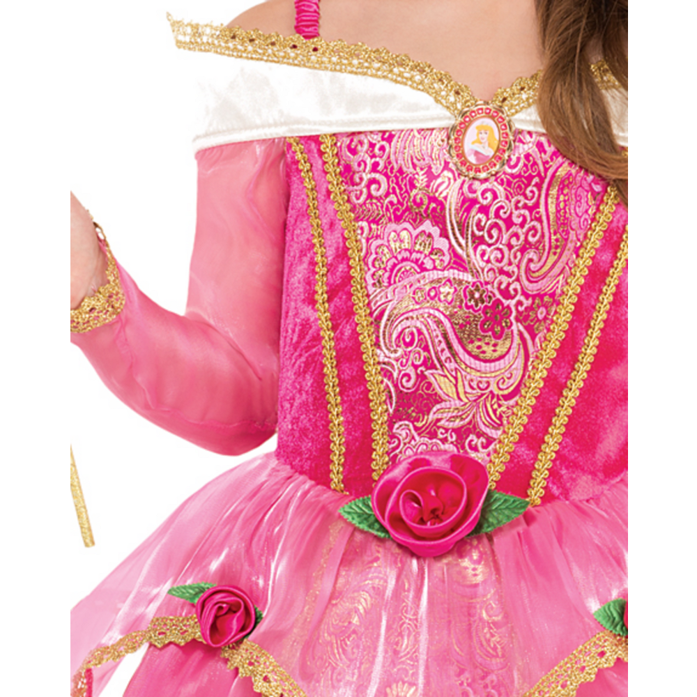 Girls Sleeping Beauty Costume Supreme Image #3
