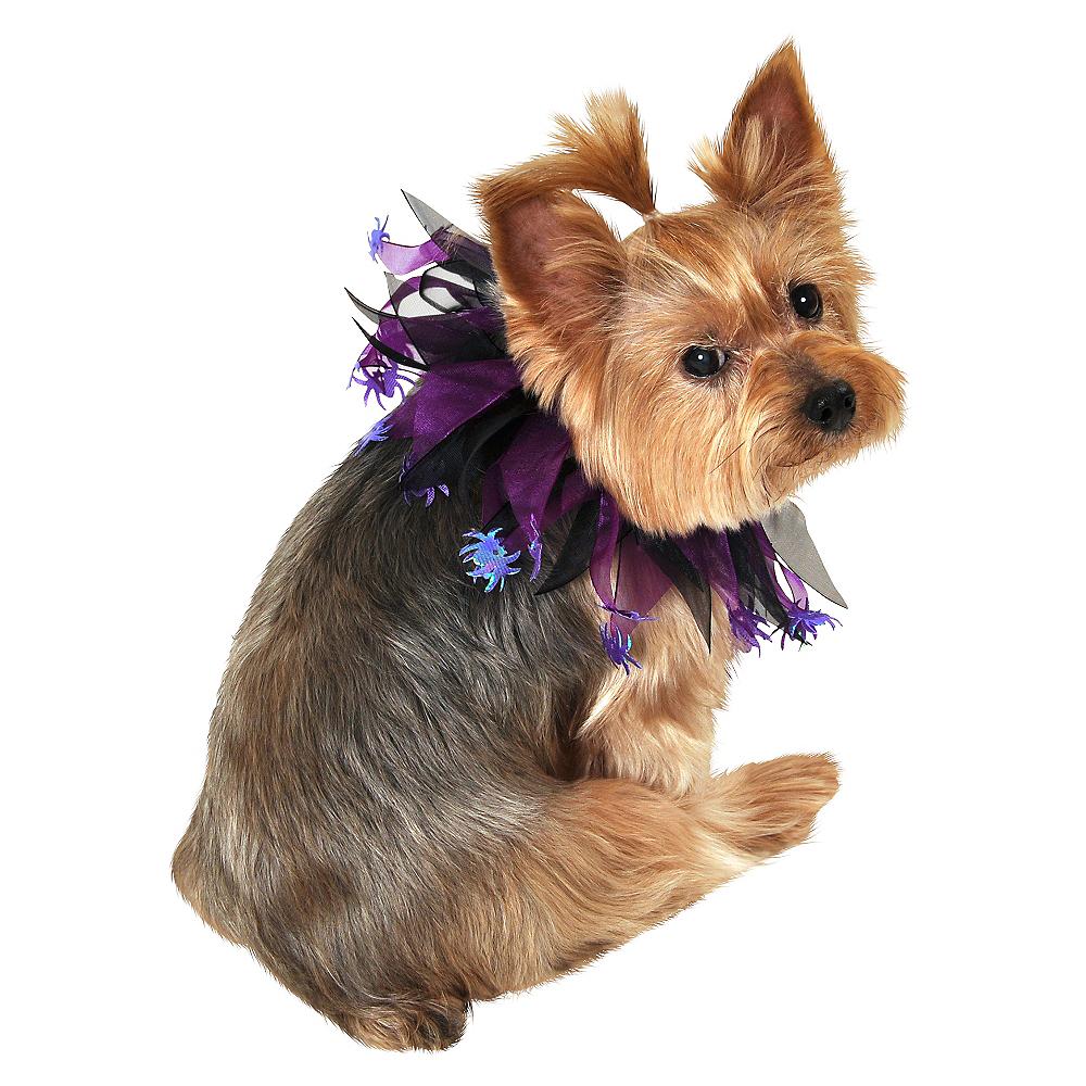 Purple Spider Dog Collar Image #1