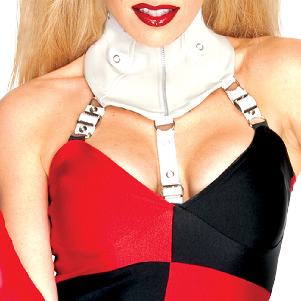 Adult Sexy Harley Quinn Costume - Batman Image #2