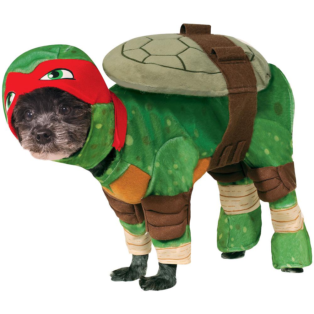 Teenage Mutant Ninja Turtles Raphael Dog Costume Image #1
