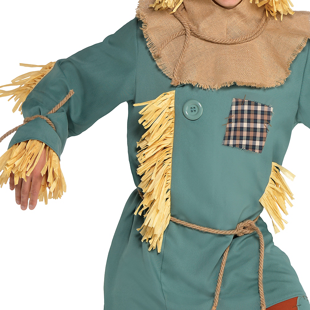 Adult Silly Scarecrow Costume - Wizard of Oz Image #3