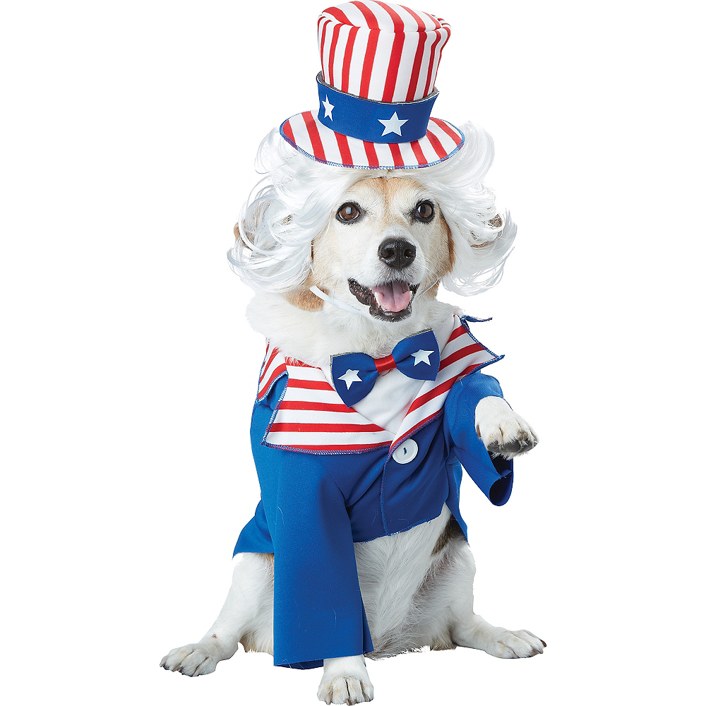 Uncle Sam Dog Costume Image #2