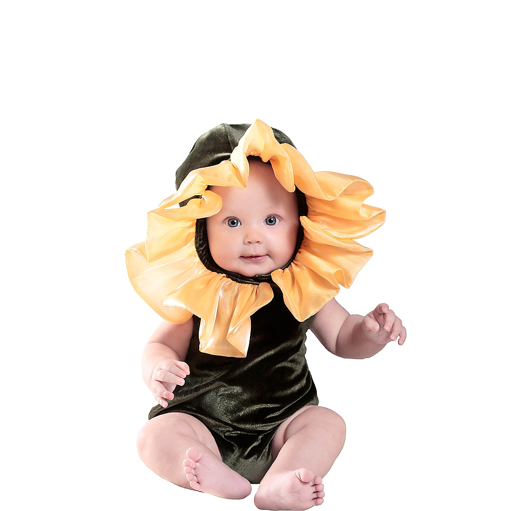 Nav Item for Baby Anne Geddes Flower Costume Image #1