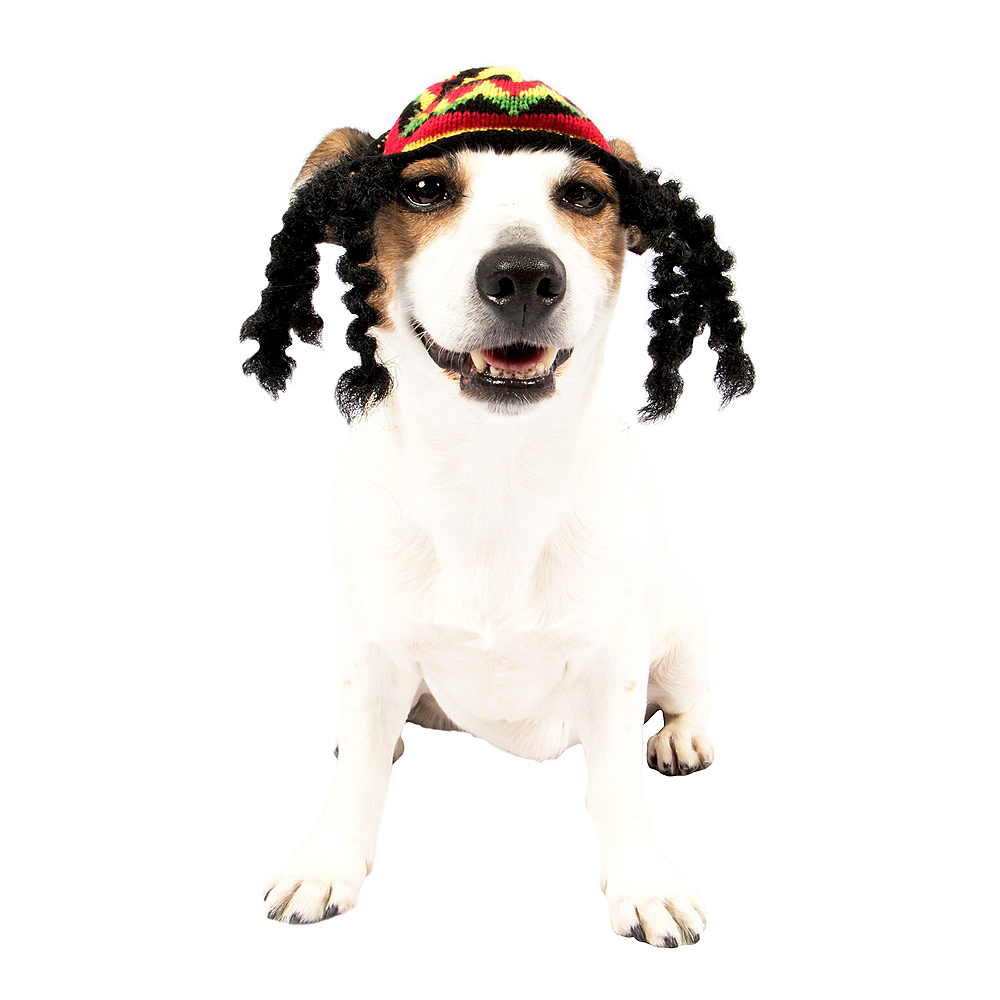 Rasta Dog Costume Image #1