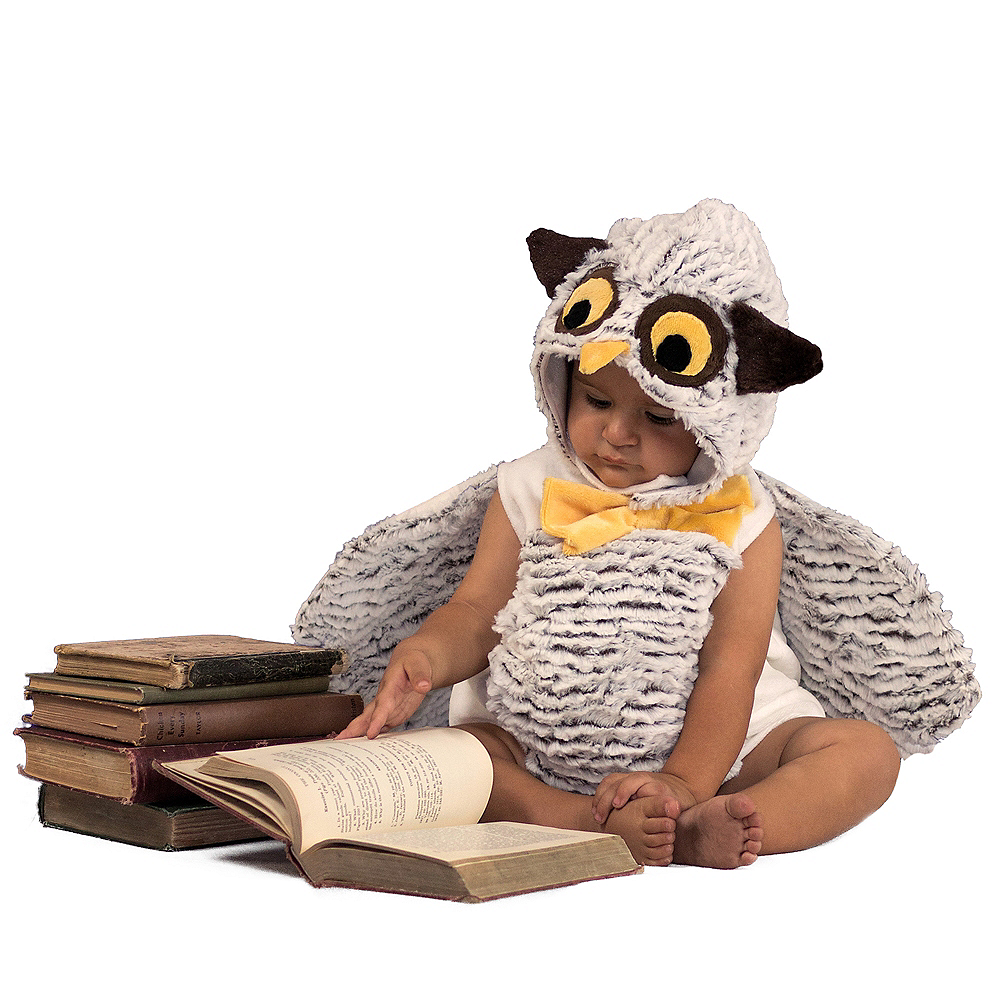 Nav Item for Baby Oliver the Owl Costume Image #1