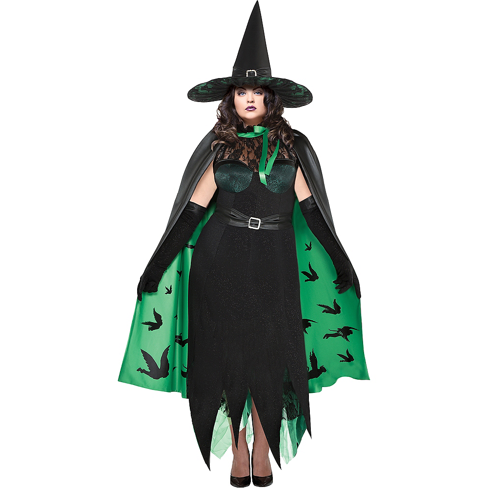 Womens Wicked Witch Costume Plus Size - The Wizard of Oz Image #1