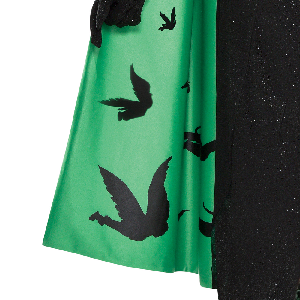 Womens Wicked Witch Costume Plus Size - The Wizard of Oz Image #4
