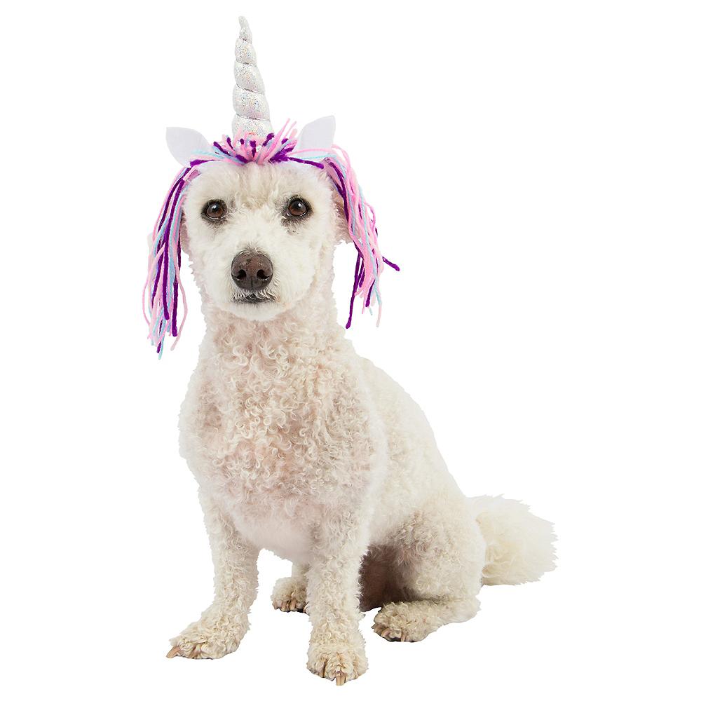 Dog Unicorn Horn Image #1