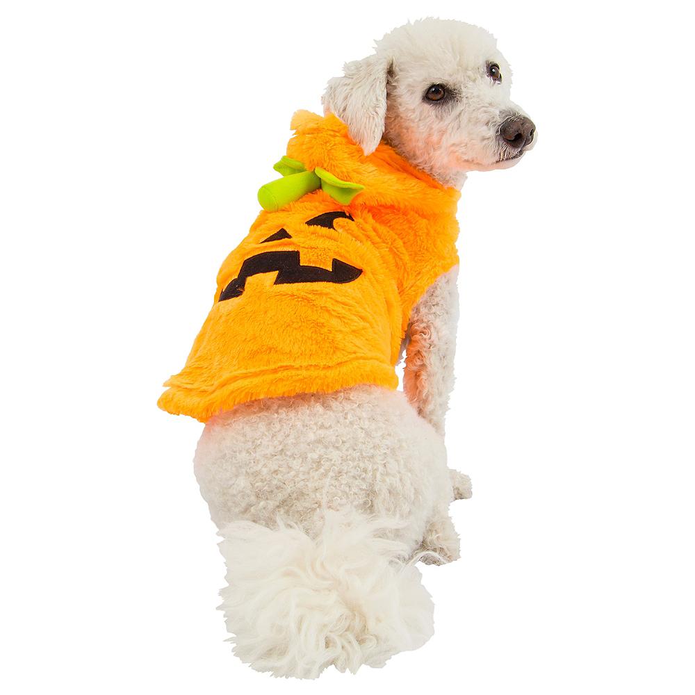 Jack-o'-Lantern Dog Costume Image #1