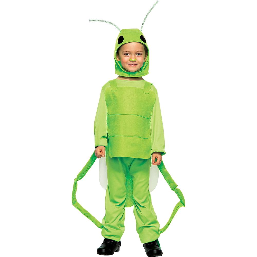 Boys Little Grasshopper Costume Image #1
