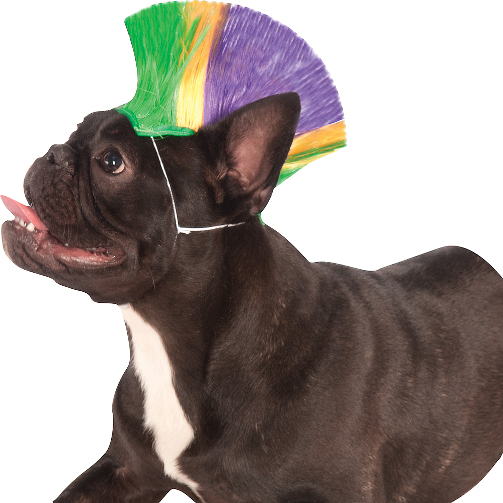Nav Item for Mardi Gras Mohawk Dog Wig Image #1