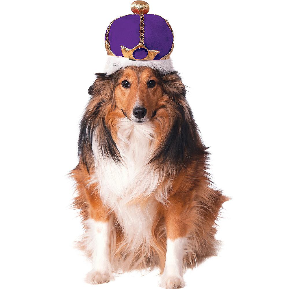Purple Dog Crown Image #1